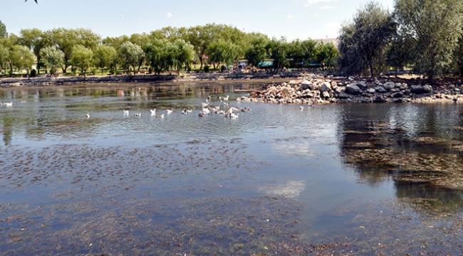 Kızılırmak'da Sular Azaldı Kirlilik Çoğaldı