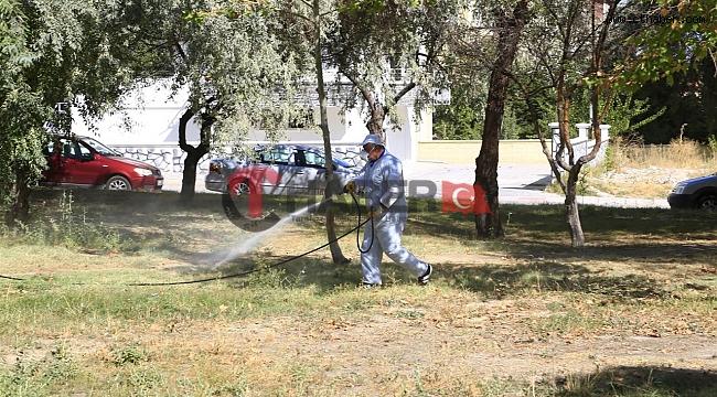 Başka İllerdeki Kene Vakaları Nevşehir Belediyesini Harekete Geçirdi